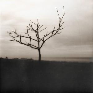 Desolation_by_OpusImperfectum