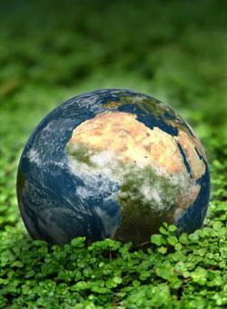 earth_care