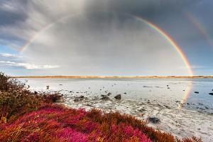 rainbow-by-the-lake-evgeni-dinev